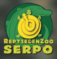 Website van Serpo