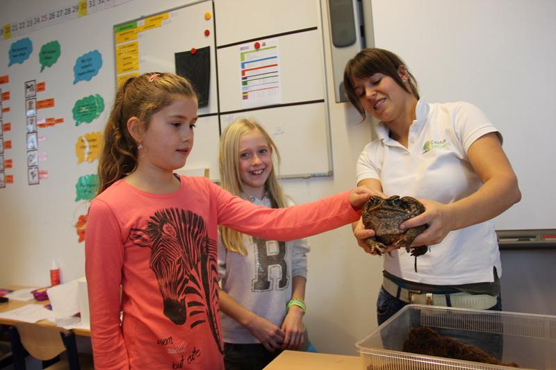 Dominique laat een leerling een grote kikker zien tijdens een natuureducatie les.
